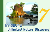 เกาะพยาม Unlimited Nature Discovery